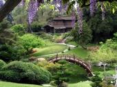 jardins-japoneses